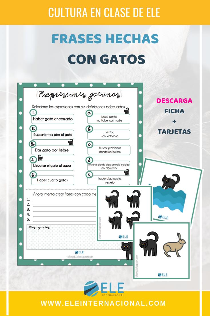 Frases hechas con gatos en español para clases de ELE. #vocabulary #spanishteacher
