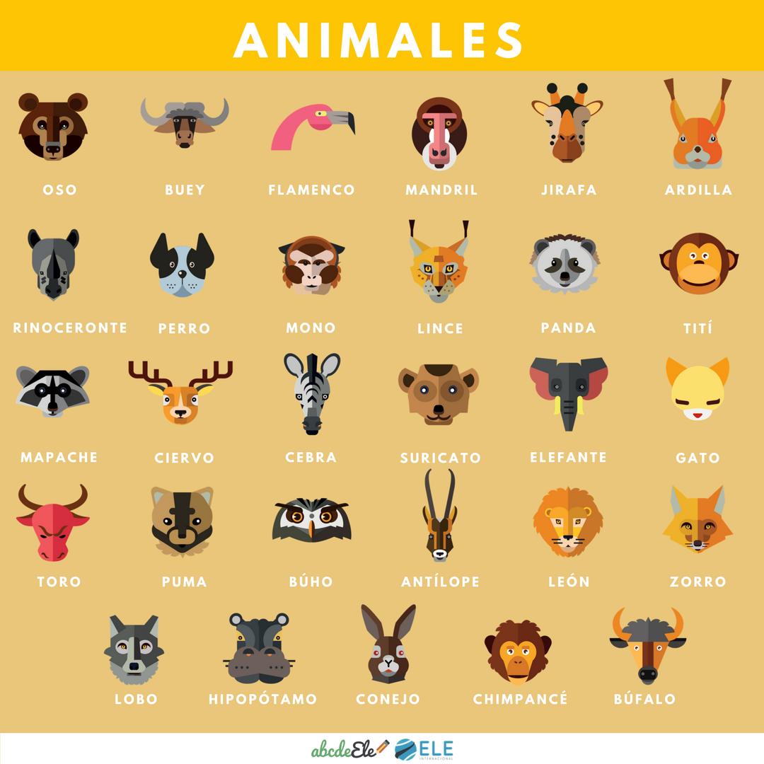 Pósteres vocabulario clase de ELE. Animales clase de ELE. Spanish animals.