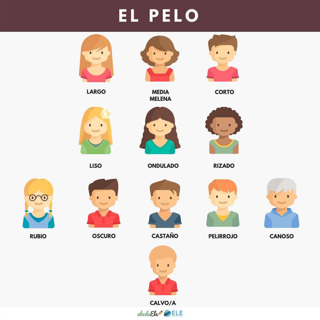 Pósteres vocabulario clase de ELE. Vocabulario descripción física clase de ELE. Spanish physical description vocabulary. #spanishteacher #profedeele