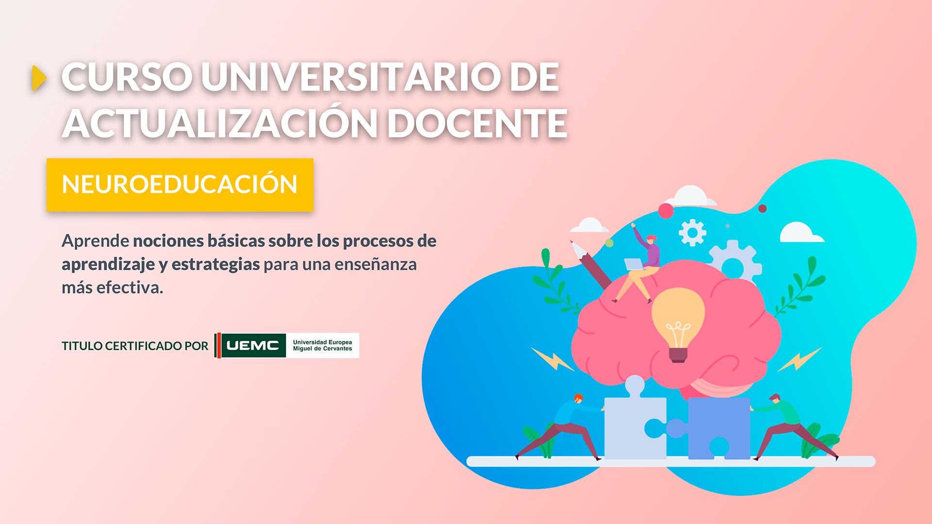Cursos Universitarios de Actualización Docente: Neuroeducación